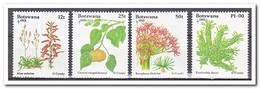 Botswana 1993, Postfris MNH, Plants, Christmas - Botswana (1966-...)