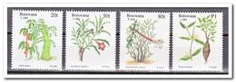 Botswana 1995, Postfris MNH, Plants, Christmas - Botswana (1966-...)