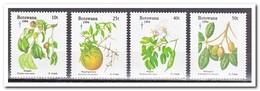 Botswana 1994, Postfris MNH, Plants, Christmas, Fruit, Food - Botswana (1966-...)