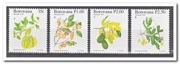 Botswana 1997, Postfris MNH, Plants, Christmas - Botswana (1966-...)