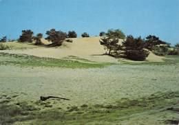 CPM - GRUITRODE - De Zandbergen - Meeuwen-Gruitrode