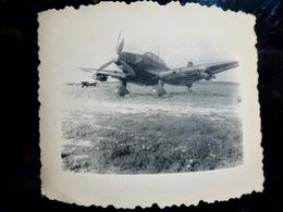 PHOTO WW2 WWII : JUNKERS Ju-87 ** STUKA ** LUFTWAFFE        //1.22 - Guerra, Militari