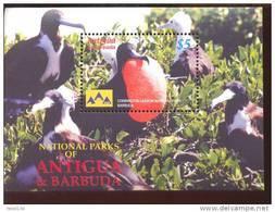 ANTIGUA & BARBUDA   2866 MINT NEVER HINGED SOUVENIR SHEET OF  NATIONAL PARKS CODRINGTON LAGOON ; BIRDS - Non Classés
