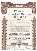 Action Ancienne - L'Albanite Et Les Minéraux De La Thyle - Court-Saint-Etienne - - Industrie
