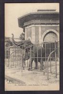 CPA 13 - MARSEILLE - Jardin Zoologique - L'Eléphant - TB PLAN ANIMAL - ZOO - Other