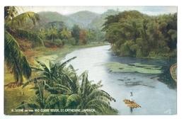 1900's, Jamaica, St Catherine, Rio Cobre River. Printed 'oilette' R.Tuck Pc, Unused. - Jamaica