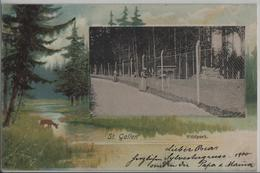 St. Gallen - Wildpark, Animee, Litho - SG St. Gall