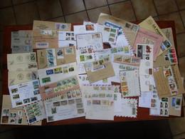 Lot 40 Enveloppes Et FDC Afrique Oiseaux, De Gaule, Thématiques - Timbres