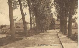 5. WATERMAEL : La Pecherie - Watermael-Boitsfort - Watermaal-Bosvoorde