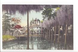 19734 -  JAPON - JAPAN - Jolie Carte Bridge And Cherry Blossoms - Japon