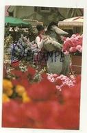 Disney Land. Flower Markt. Bourriquet - Disneyland