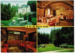 La Ry De Belle Rose, Grupont  (pk44561) - Tellin
