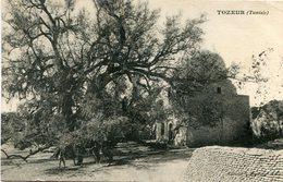 TUNISIE(TOZEUR) ARBRE - Túnez
