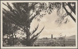 La Laguna, Alrededores, Tenerife, Islas Canarias, C.1930s - Baena Foto Tarjeta Postal - Tenerife