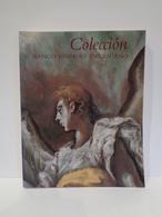 Colección Banco Hispano Americano. Ediciones El Viso, Año 1991. 469 Páginas. - Livres, BD, Revues