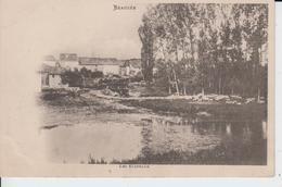 MEUSE - BEAUZEE - Les Evateaux ( - Gros Troupeau De Moutons Sur Le Berge De L'Aire  - Carte Pionnière - N'a Pas Circulé - Sonstige Gemeinden