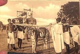 1 Carnet 12 Cartes Au Chota-Nagpore (animée, Tigre, Transport Boeufs.... Nels) - Inde