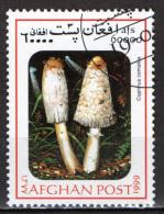 AFGHANISTAN - 1999 - FUNGHI - USATO - Afghanistan