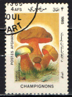 AFGHANISTAN - 1985 - FUNGHI: CHAMPIGNONS - USATO - Afghanistan