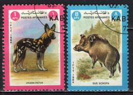 AFGHANISTAN - 1984 - ANIMALI:  LYCAON PICTUS,  SUS SCROFA - USATI - Afghanistan