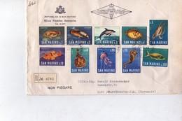 San Marino 1966-Poissons, Dauphin,poulpe-série Sur Lettre FDC Envoyée Vers L'Allemagne - Meereswelt