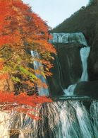 1 AK Japan * Fukuroda Wasserfall Im Herbst - In Der Präfektur Ibaraki - Einer Der Schönsten Wasserfälle Japans - Giappone