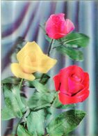 Roses 3 Couleurs - Lot.2025 - Cartoline Stereoscopiche