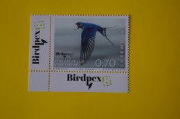 4-404 Hirondelle Bird Oiseau Pássaro Pájaro Tragar Martin Engolir Rondine - Swallows