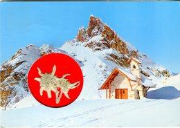 Passo Falzarego. Sasso Di Stria. Con Stella Alpina - Lot.2030 - Cartoline