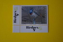 4-405 Bird Oiseau Pássaro Pájaro Gorge Bleue Gorgebleue à Miroir - Swallows
