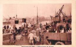 62 - Boulogne-sur-Mer - Débarquement Du Poisson - Boulogne Sur Mer