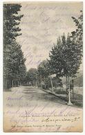 Caldas De Moledo Parque Avenida Das Tilias 144 Edit Alberto Ferreira Porto  Vers Liege - Portugal
