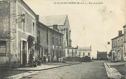 D-18-224 : LA SALLE-DE-VIHIERS - France
