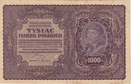BILLETE DE POLONIA DE 1000 MAREK  1ª SERIE BU DEL AÑO 1919 (BANK NOTE) - Polonia