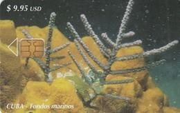 11958- SCHEDA TELEFONICA - CUBA - FONDOS MARINOS - USATA - Cuba