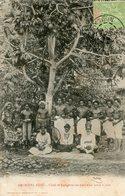 FIDJI(TYPE) ARBRE A PAIN - Fidji