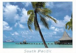 1 AK Beautiful South Pacific * - Ansichtskarten