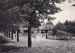 Neerpelt, Speeltuin (pk46126) - Neerpelt