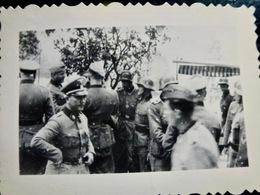 PHOTO Foto WW2 WWII : Elite WAFFEN        //1.39 - Guerra, Militari