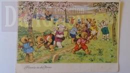 D158285 Teddy Bären, Hinaus In Die Ferne, Fritz Baumgarten,  Nounours Ours Botanique Sauterelle Insecte Chasse - Ours