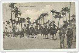 TRIPOLI ITALIANA HAMMAMJI DEL 1912 VIAGGIATA FP - Libia