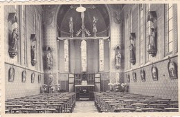 Torhout, St Vincentius, Kapel (pk46180) - Torhout