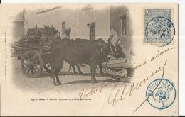 CP Cad  Bleu MADAGASCAR  25 AVRIL 1904 Pour SURGERES  TTB - Covers & Documents