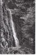 Burgbach Bei Bad Rippoldsau - Wasserfall    -    (90100-001) - Bad Rippoldsau - Schapbach