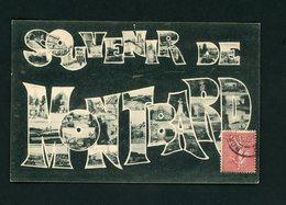 CPA: 21 - MONTBARD - SOUVENIR DE  - - Montbard