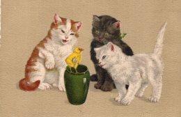 V13314  Cpa Illustrée Chat - Chats, Bonne Fête - Gatti