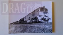 D158344  Old Photo - Békéscsaba-Szeged -Algyö -MÁV Train -  - Hungary Trasportation Museum Archiv Photo Ca 1970 - Trains
