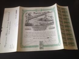 Action Mexique 1929 - 20 $ Superbe - Mines