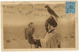 Fauconnerie Chasseur Fauconnier Algerie Hunting Hawk Used From Kouba 1931 - Emirati Arabi Uniti