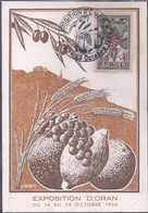 Carte Maximum Exposition Oran 1950 - Maximumkarten